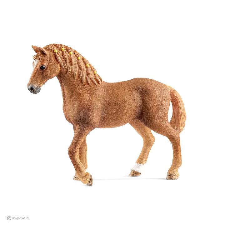jument quarter horse d'occasion