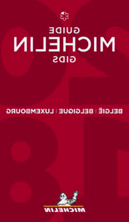 guide rouge michelin d'occasion