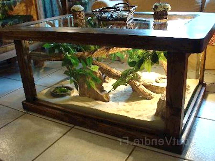 table basse terrarium d'occasion
