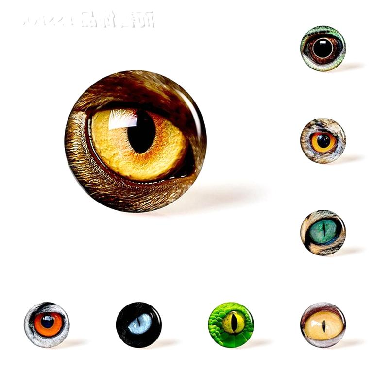 oeil verre animaux oeil verre animaux d'occasion