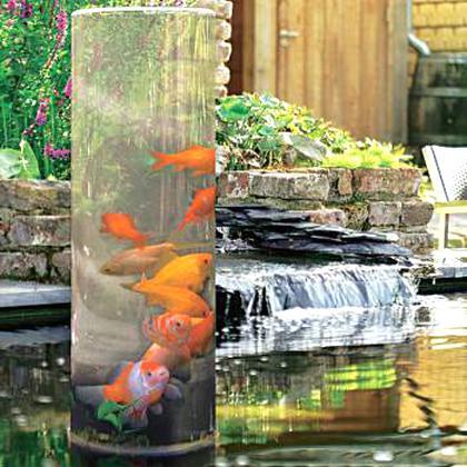 plusieurs couleurs le moins cher marque célèbre Bassin Poisson d'occasion | Plus que 2 à -60%