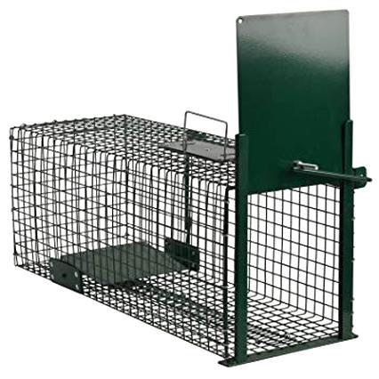 Cage Piege Doccasion Plus Que 3 à 70