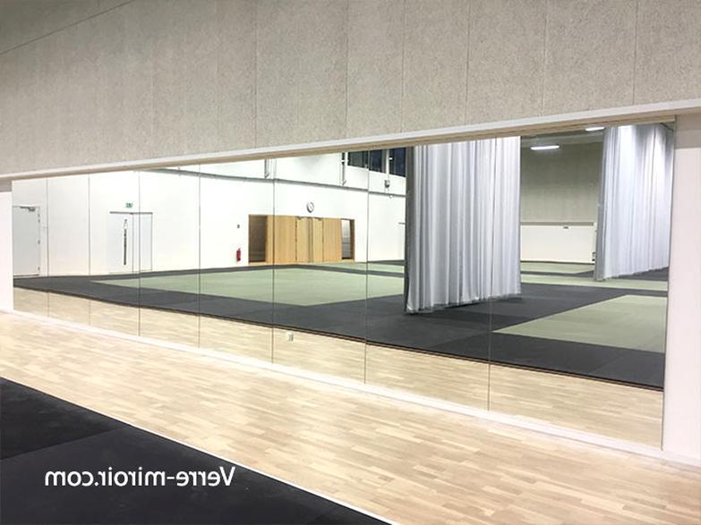 Miroir Salle Sport D Occasion