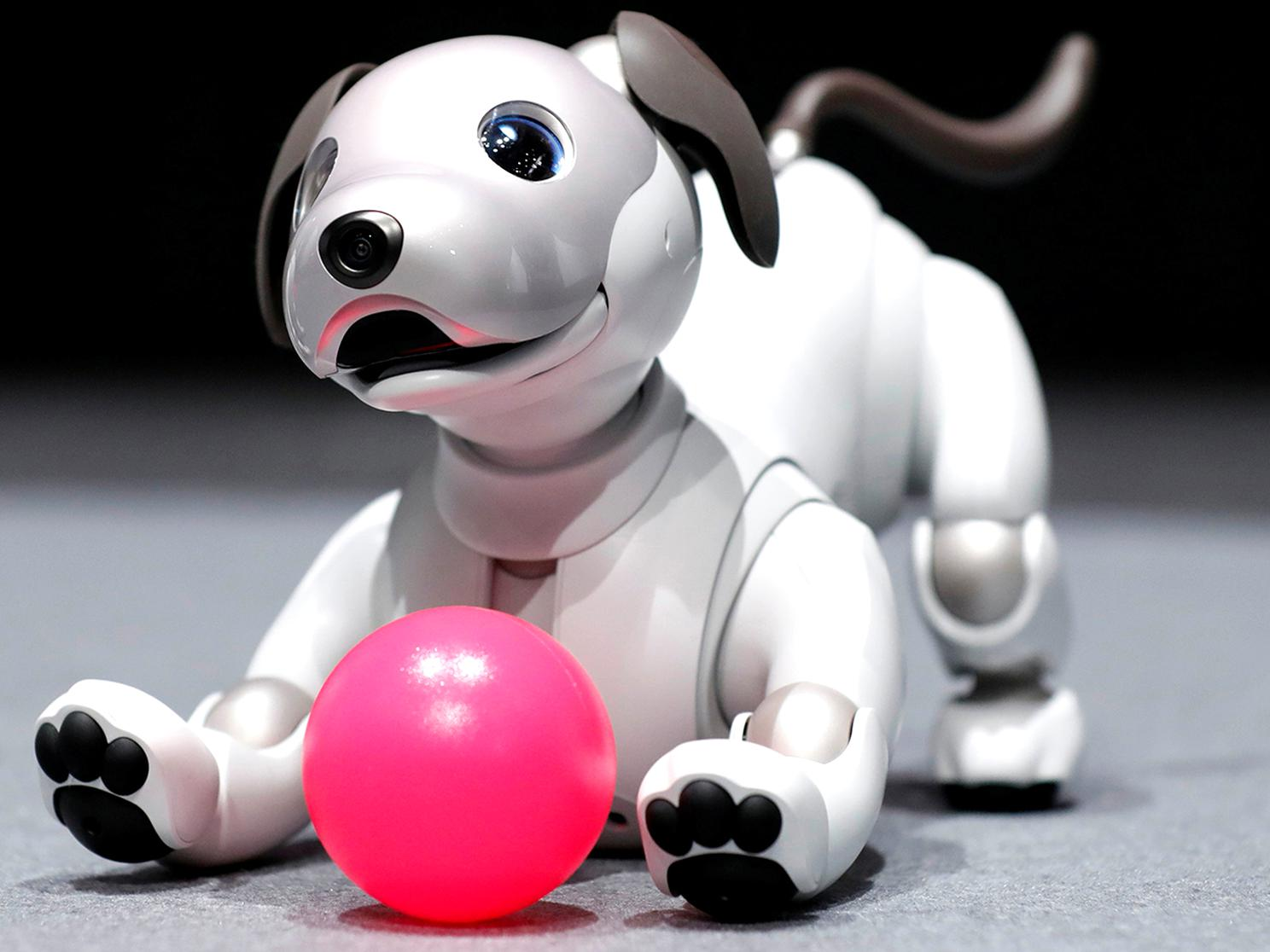 aibo robot d'occasion