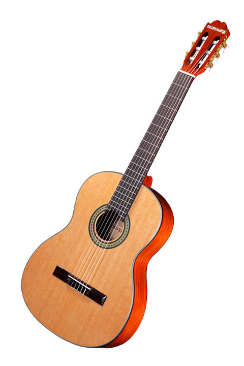 guitare suzuki d'occasion