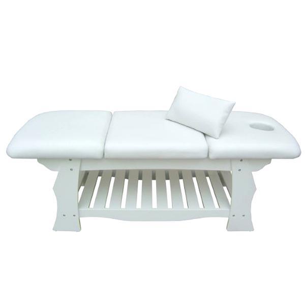 Table Massage Professionnelle D Occasion