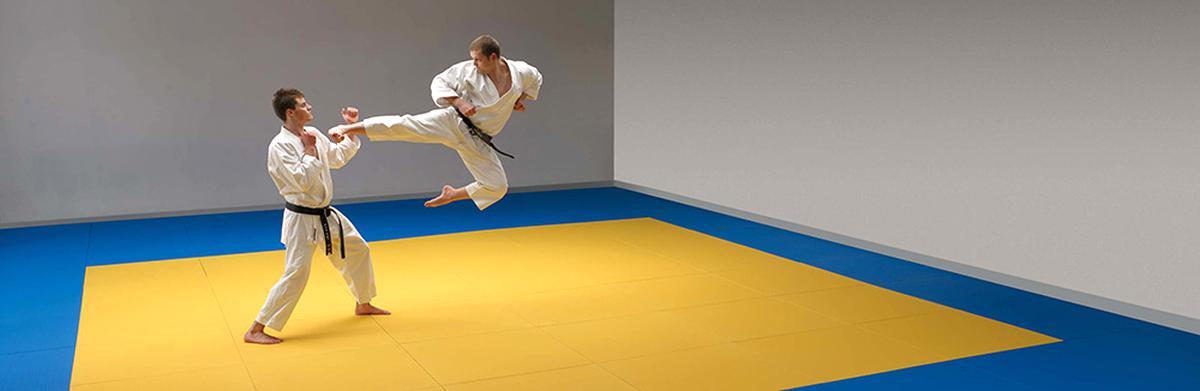tapis sport combat d'occasion