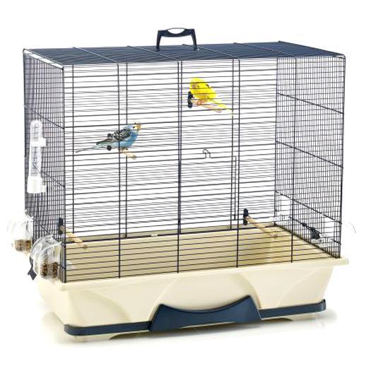 Cage Oiseaux Doccasion Plus Que 2 à 60