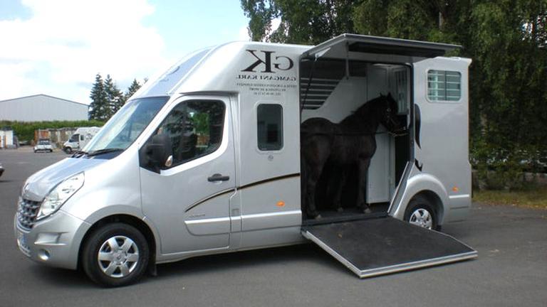 Camion Chevaux Vl D Occasion Plus Que 4 à 60