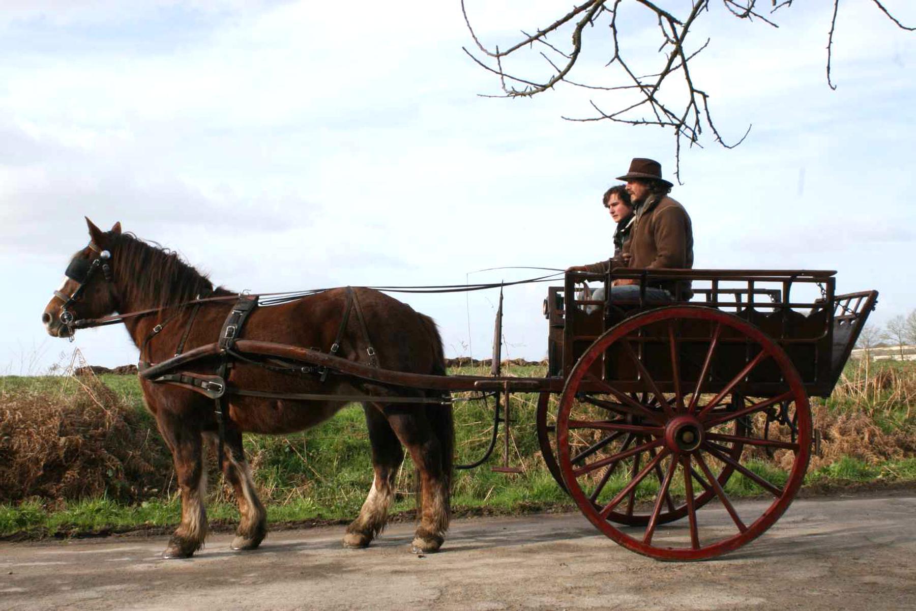 charrette a cheval d'occasion