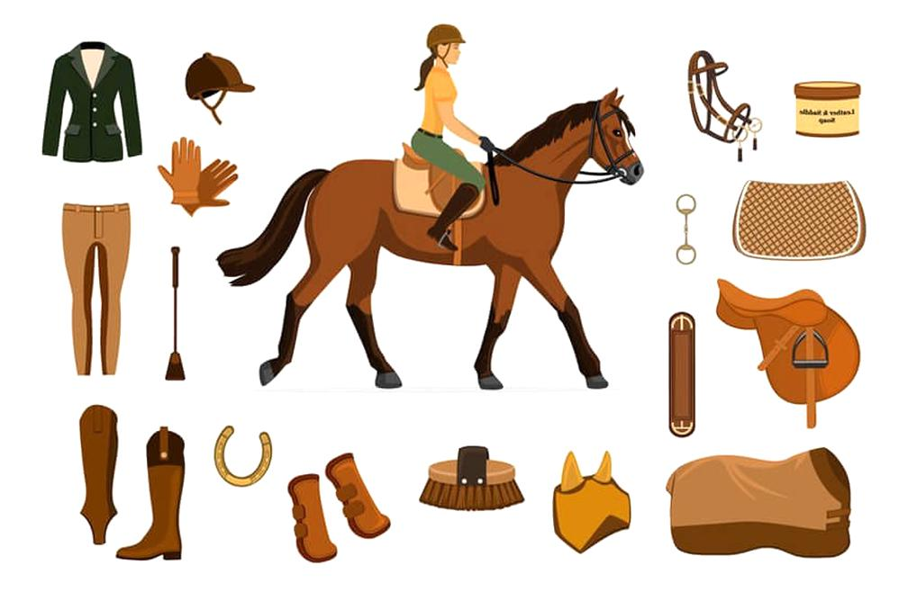 equipement cheval d'occasion