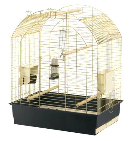Oiseau Inseparable Cage Doccasion