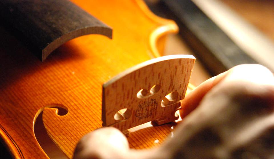 Drfeify mentonni/ère en Bois pour Violon Accessoires pour violons 3//4 4//4