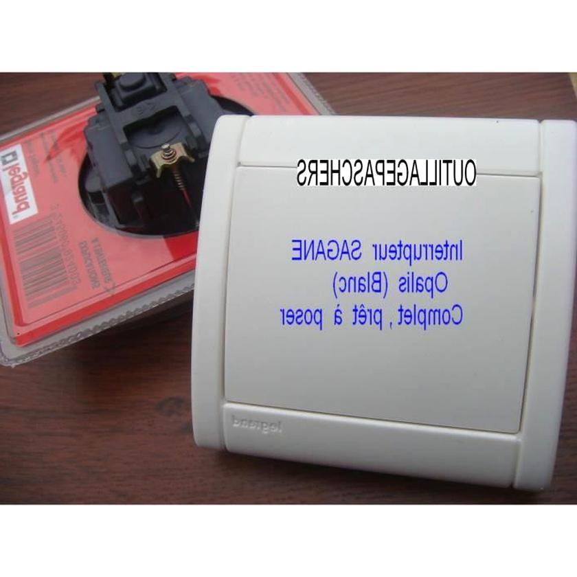 Interrupteur va et vient poussoir 84024  legrand sagane opalis blanc 85000