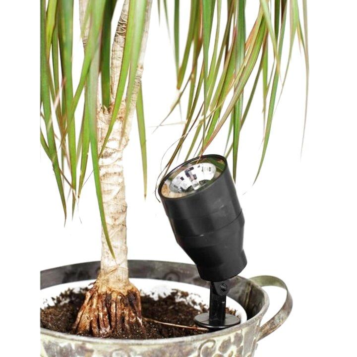 eclairage plante interieur d'occasion