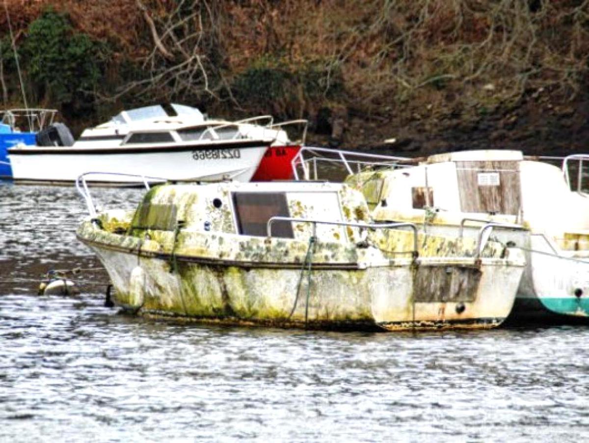 casse bateaux d'occasion