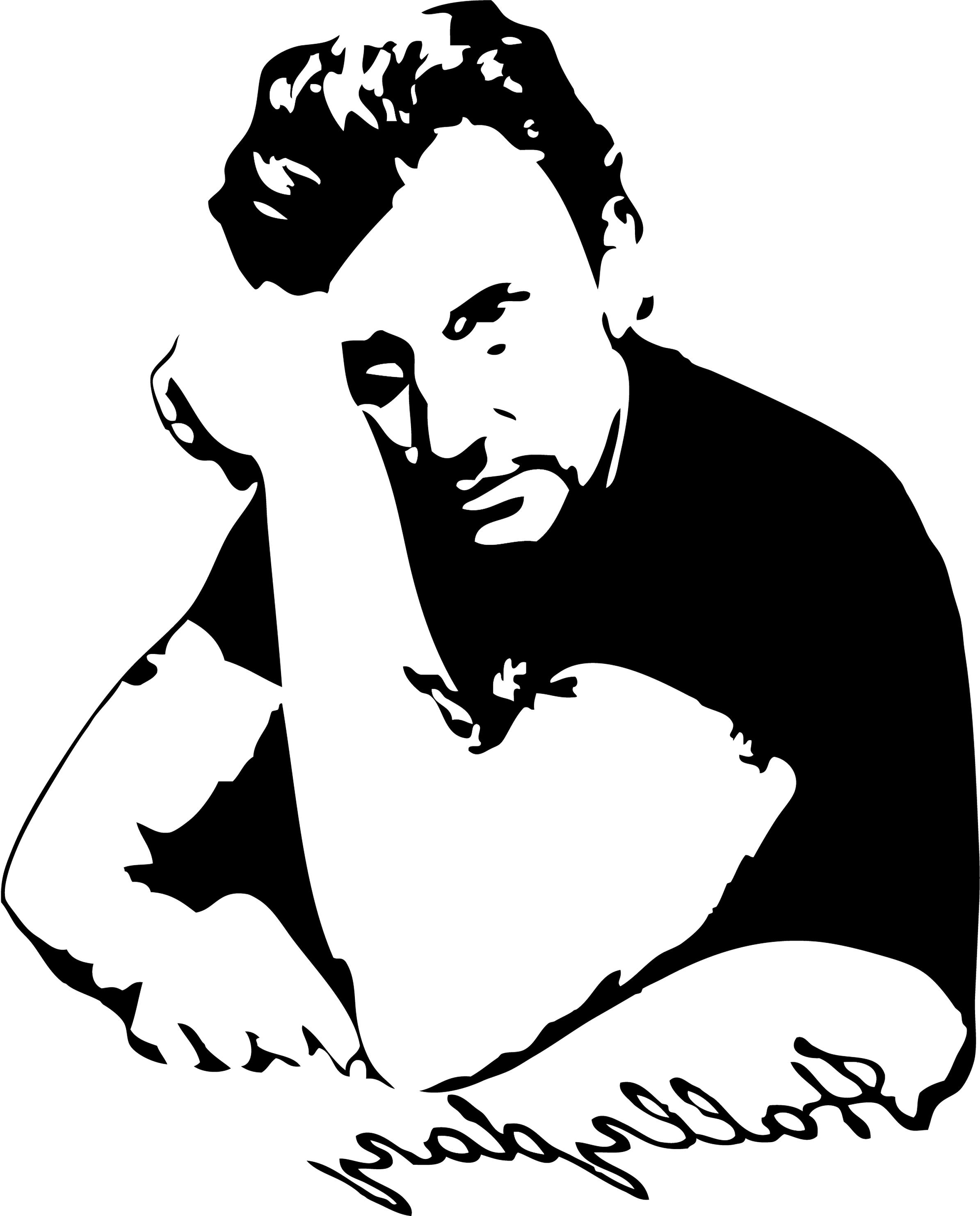 johnny hallyday stickers d'occasion