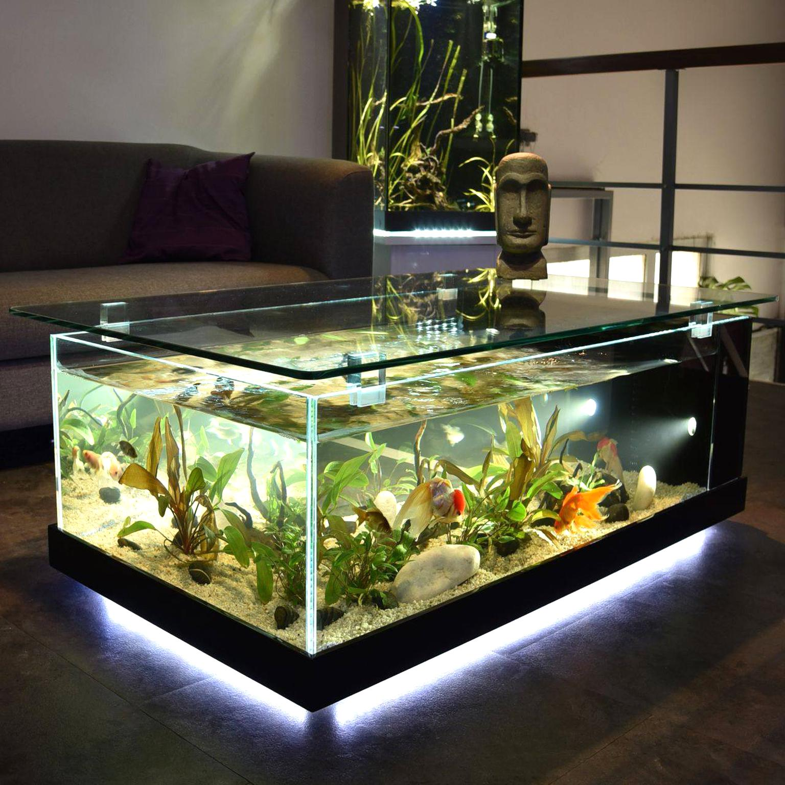 aquarium table basse d'occasion
